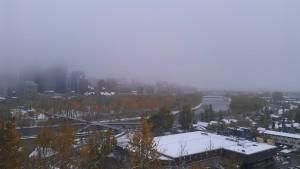 Calgary city view.